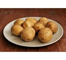 Картофель свежий ~ 1кг.